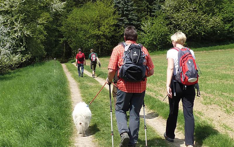 Foto: Naturpark Rhein-Westerwald