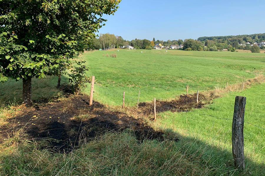 Flächenbrand in Rodenbach
