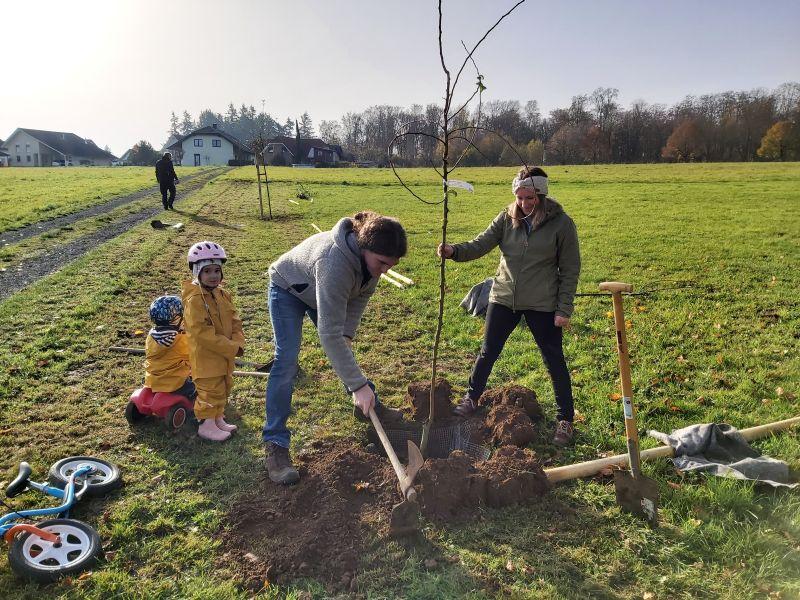 Erste Baumpflanzaktion in Härtlingen