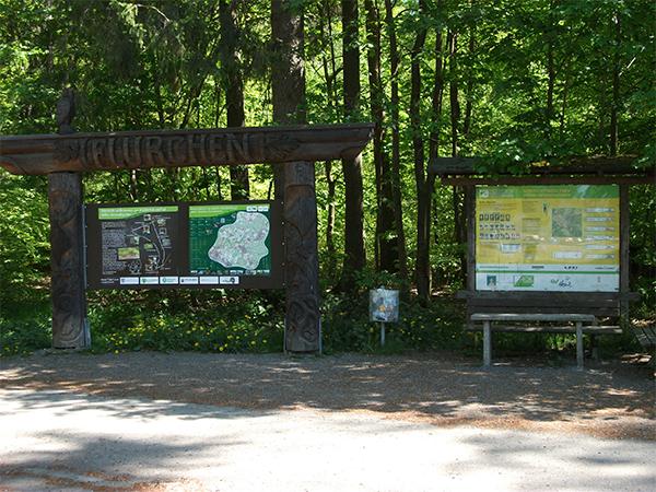 Kostenfreie geführte Wanderung zum Naturdenkmal Bühl