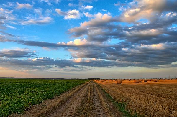 EULLa-Antragsverfahren für Landwirte eröffnet
