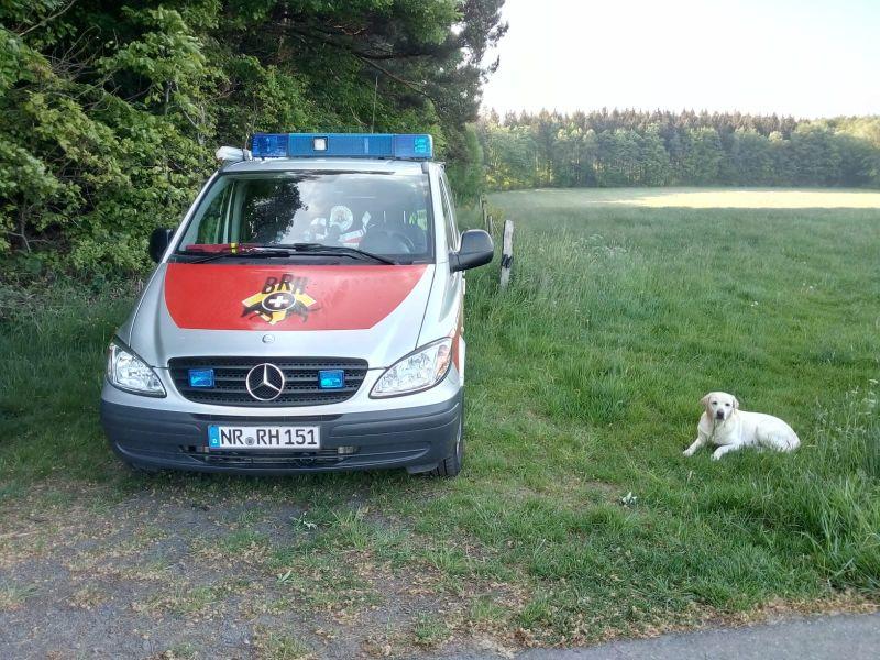 Rettungshunde-Staffel im Sondereinsatz. Fotos: privat
