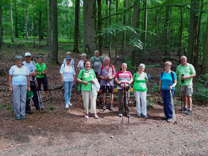 Westerwaldverein Bad Marienberg wanderte um den Schorrberg