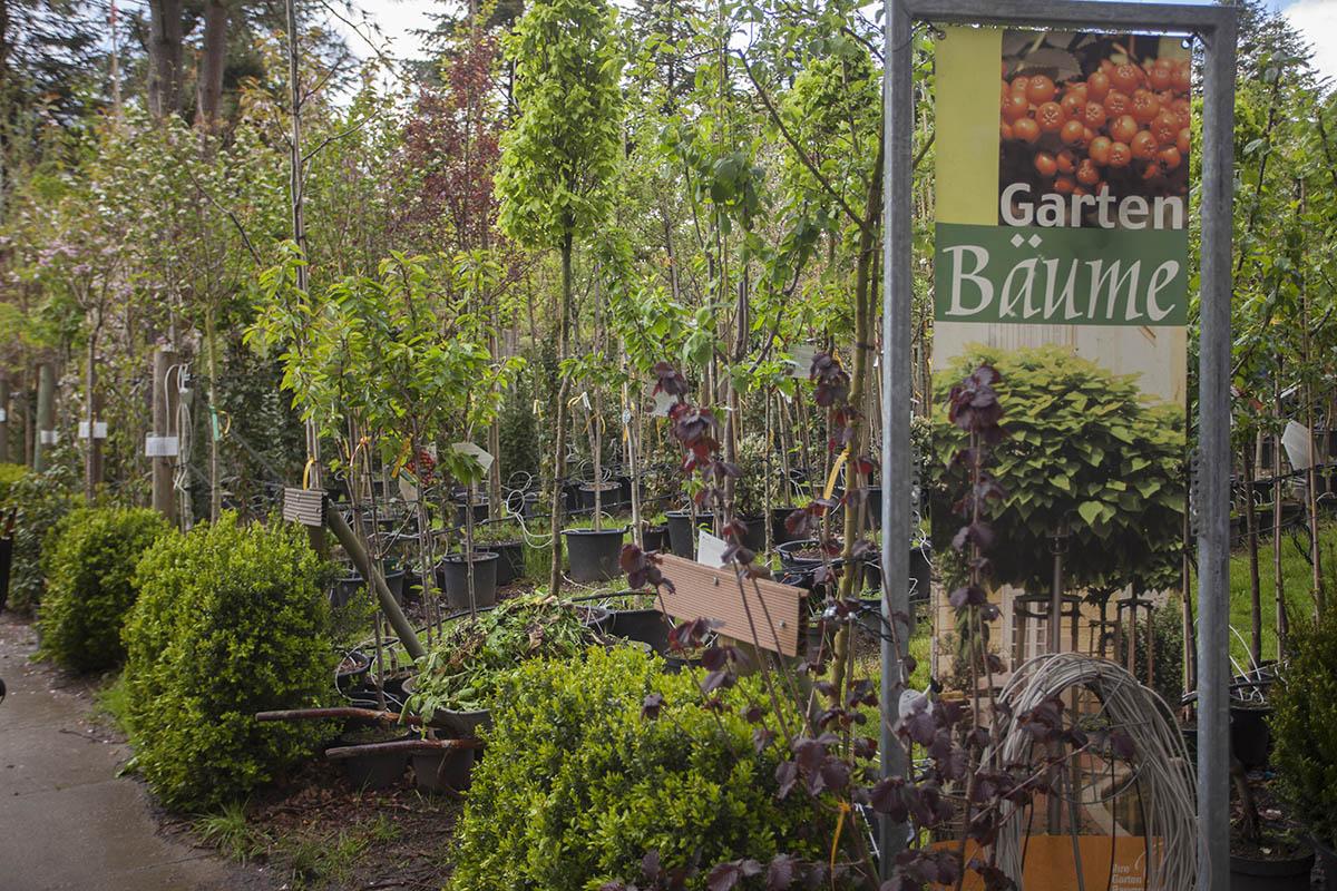 Pflanzenhof Schürg bietet besonderes Naturerlebnis