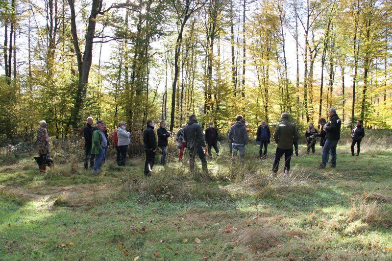 Waldbegang des Wirgeser Stadtrats. Foto: Norbert Schwickert
