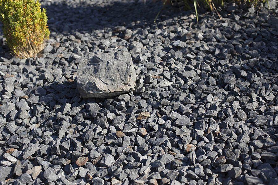 Steinwüsten in Vorgärten Absage erteilt
