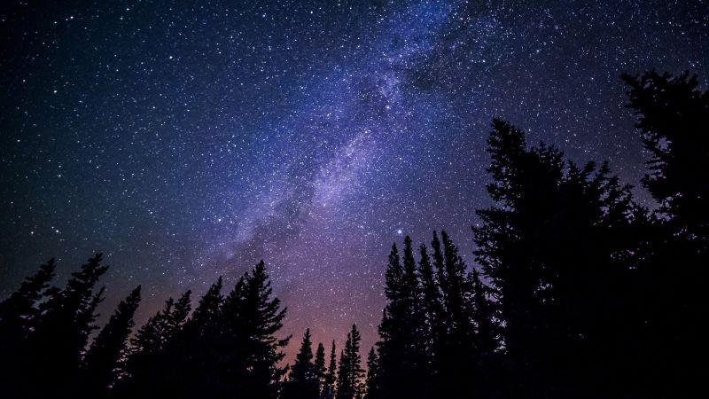 Sternenhimmel. Foto: Veranstalter