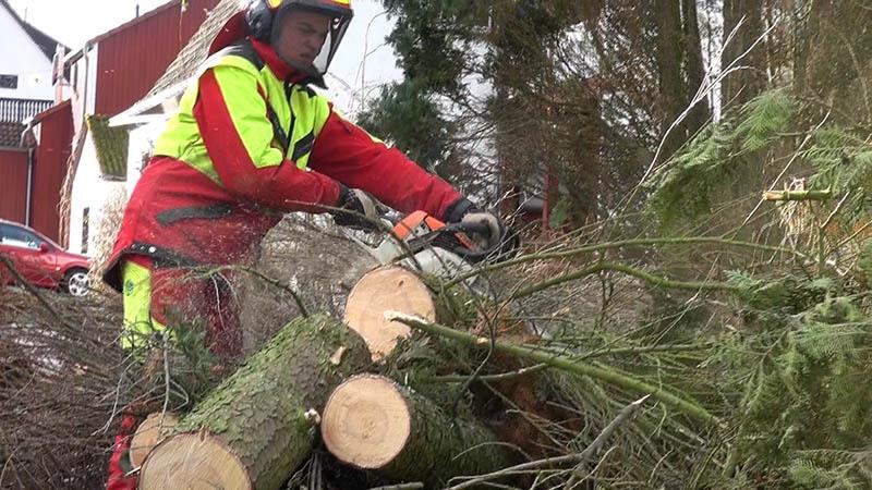 Diebstähle und umgestürzte Bäume