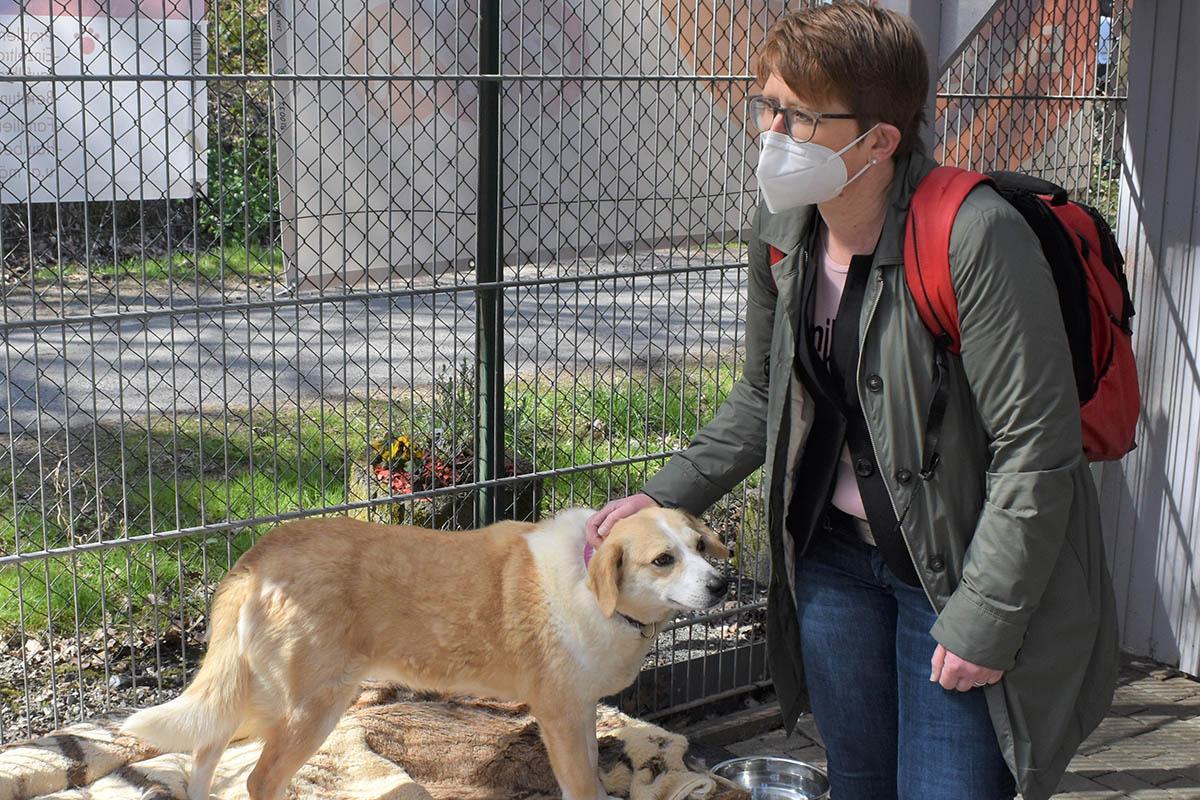 Dr. Tanja Machalet setzt sich für Tierheim in Ransbach-Baumbach ein