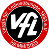 VfL Hamm Handballdamen ohne Erfolg