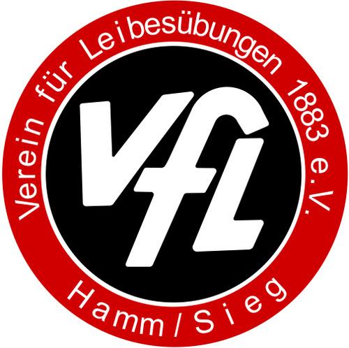 Licht und Schatten bei den Handballern des VfL Hamm