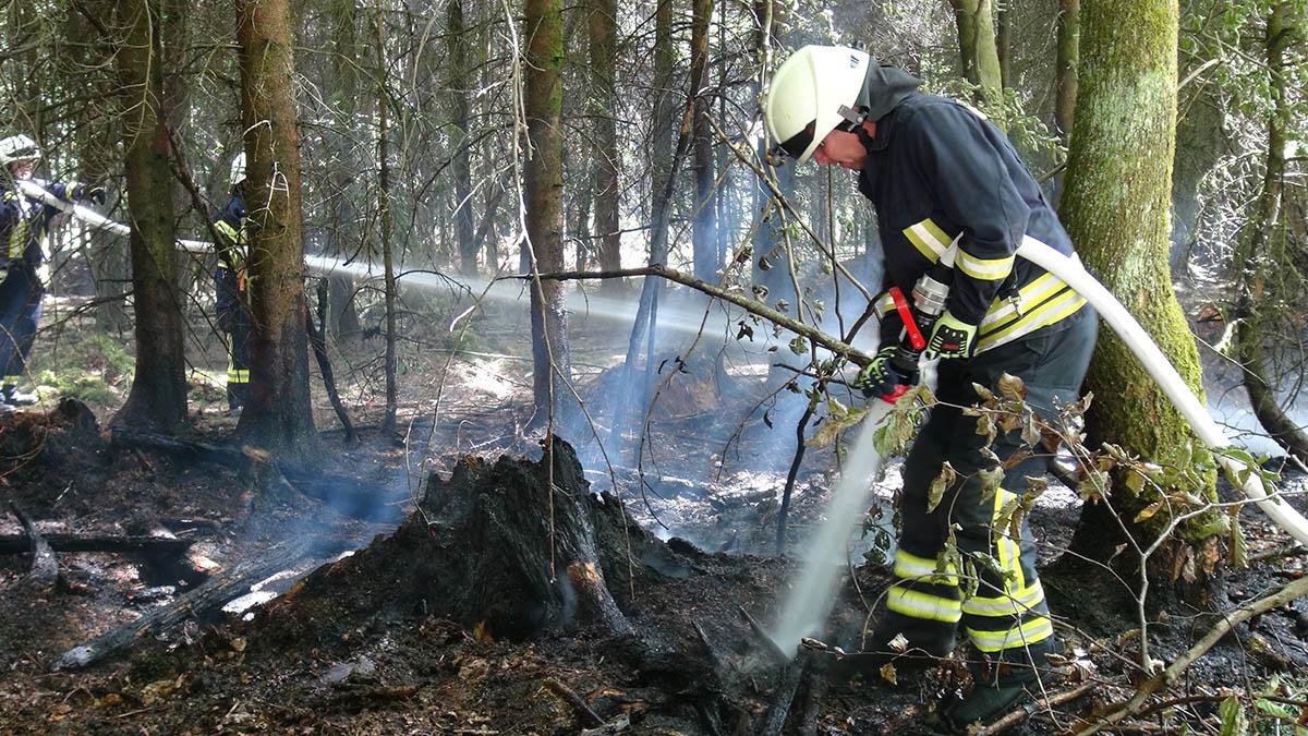 Im letzten Jahr gab es in unserer Region etliche Waldbrände. Archivfoto: Wolfgang Tischler