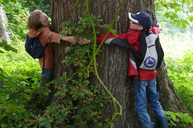 Kinder sind am 10. Juni zu Walderlebnisspielen willkommen