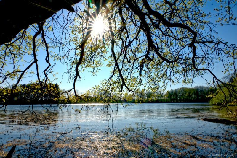 Kurze 3-Weiher-Wanderung an der Westerwälder Seenplatte