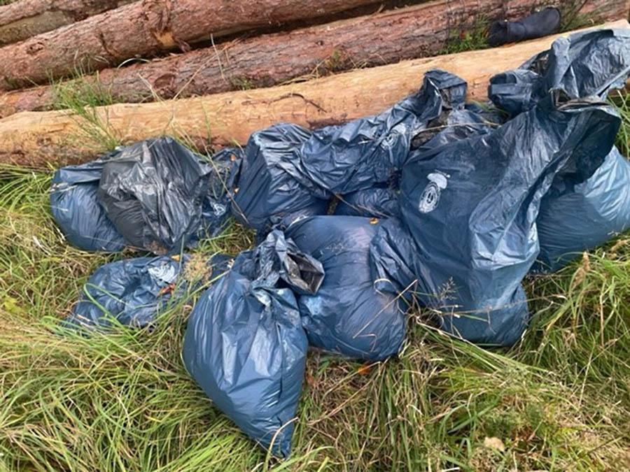 Benutzte Windeln wiederholt im Wald abgelagert