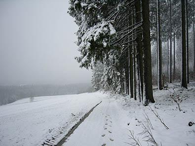 Winterwitterung sorgte für zahlreiche Einsätze