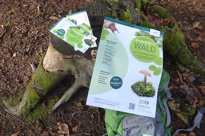 Puderbacher Land Trendsetter bei Waldbaden-Naturerlebnisse