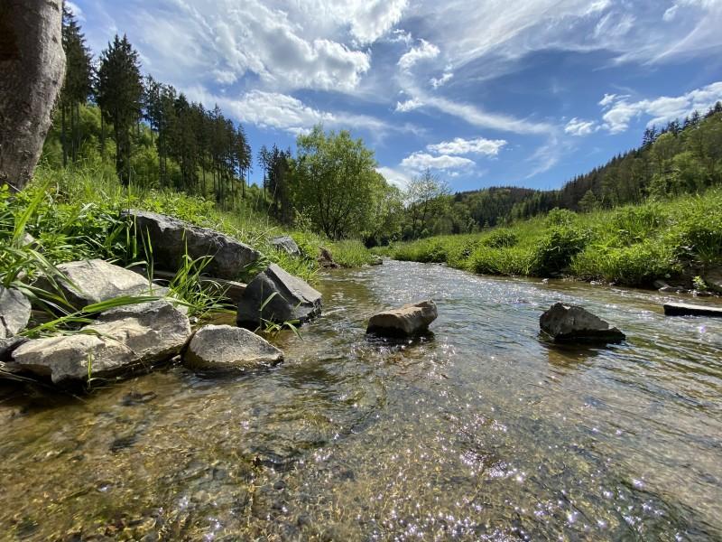 Wandertipp: Von Bitzen ins Holperbachtal und zurück