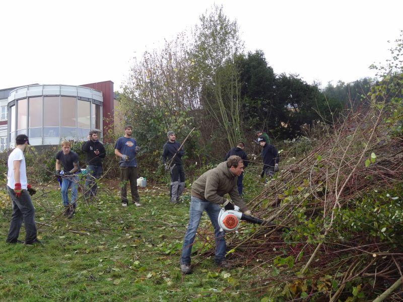 Bürgergemeinschaft Altenheim: Projektgruppen sollen Arbeitseinsätze stemmen
